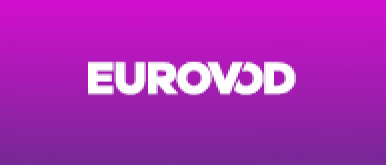 2. Eurovod Meeting